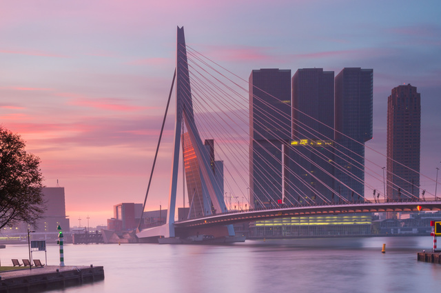 Discover 12 Gay Places in Rotterdam