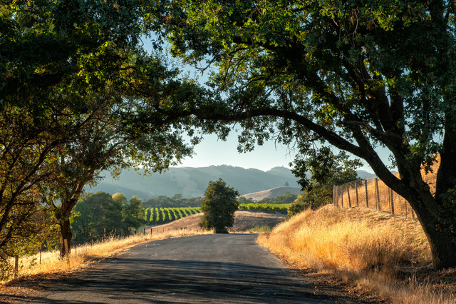 Discover 5 Gay Places in Sonoma